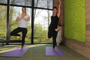 Hatha yoga boom, vrksasana, westduin, focus Vlissingen, gefocust zeeland