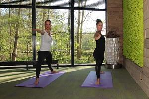 Hatha yogamat, bos, groene natuur, rust