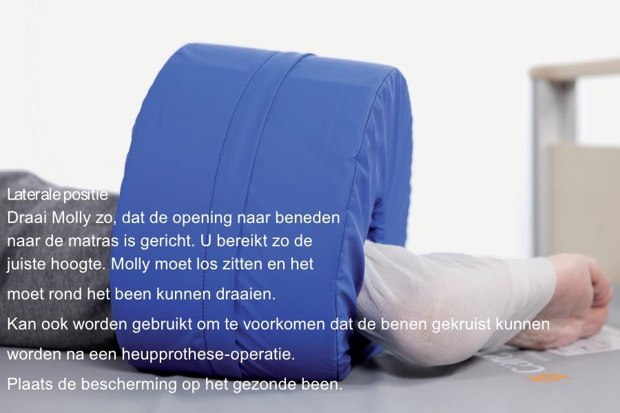 Hielbeschermer Molly 1