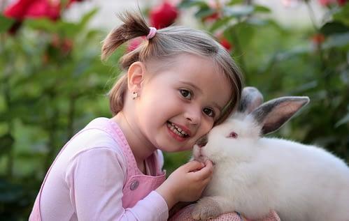 Kinderboerderijen Zeeland